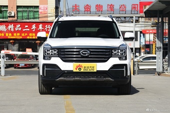 2020款传祺GS8 390T两驱豪华智联版(七座)